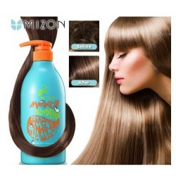 Mizon Morroccan Treatment Argan Shampoo