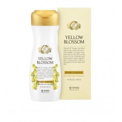 Daeng Gi Mori Yellow Blossom Anti Hair Loss Shampoo 400ml